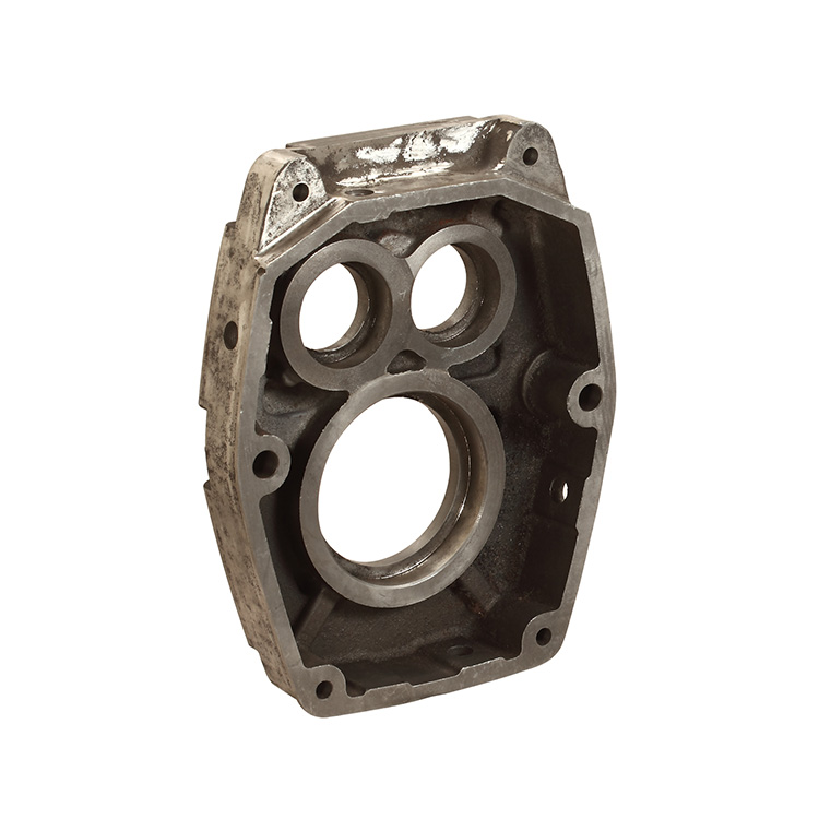 Cast Steel Pump Body Flange Casting